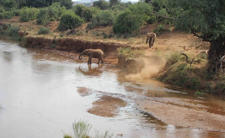 Tourism in Conservation Areas in Africa